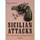 "Yuri Yakovich "" Siciian Attacks.Powerful charges & typical tactics"" (K-3396)"